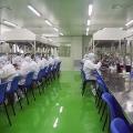 上海日月光半導體操作工